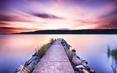 Lysterfield Lake (BenPerrin) Tags: blue sunset lake reeds pier twilight long exposure poetry purple dusk smooth silk violet australia melbourne victoria calm walkway lysterfield