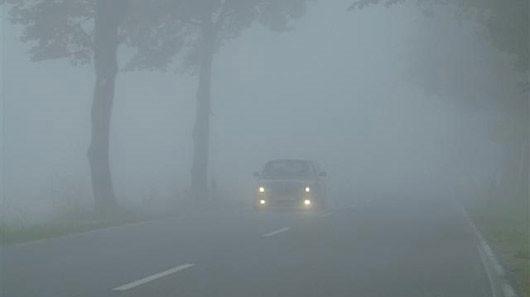 xe trong sương mù