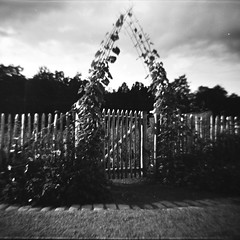 (ivan svart) Tags: street 120 6x6 film analog mediumformat square lomography sweden stockholm toycamera lofi plastic diana analogue dianacamera analogphotography plasticcamera 120mm 151 analogic filmphotography diana151 fotografiaanalogica