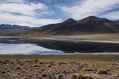 Laguna Miscanti 2619 (Giuseppe Semeraro) Tags: chile nikon honeymoon cile gms 2015 lagunamiscanti d810 nikond810
