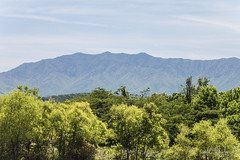 Mount Le Conte in Tennessee (mphelps311) Tags: mountain tennessee pigeon pigeonforge forge smokies leconte