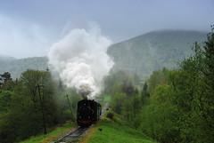 Rolling down 2/2 (DoctorMP) Tags: mountains rain clouds train para polska railway steam polen locomotive gauge narrow gry bieszczady dampflok gebirge deszcz wiosna kolej chmury parowz lena bkl schmalspurbahn wskotorwka parowozy wskotorowa kp4 dampfloks wsk kp43772