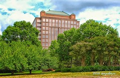 Framed By Nature (tkmoe18) Tags: hotel galleria metroatlanta cobbcounty overnightstay luxuryhotels