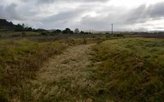 grass torrent (dustaway) Tags: winter grass landscape weeds overcast australia drain nsw australianlandscape impression channel lismore postflood northernrivers richmondvalley wilsonsrivervalley weedylandscape