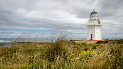 Waipapa Point lighthouse (Kathrin & Stefan) Tags: ocean newzealand sky cloud lighthouse plant flower building nature grass yellow outdoor southisland tasmansea headland waipapapoint fortrose foveauxstrait waipapapointlighthouse