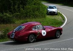 DSC_6585 - Fiat 8V - 1954 - Burrows Graham - TOPS (pietroz) Tags: silver photo foto photos flag historic fotos pietro storico zoccola 21 storiche vernasca pietroz