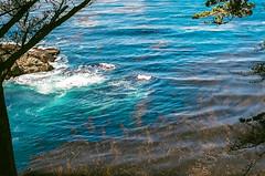 45460010 (danimyths) Tags: ocean california film beach water coast waterfront pacific roadtrip pch pacificocean westcoast californiacoast filmphotography pacificcostalhighway