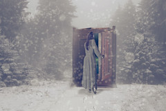 Cupboard-5 (Roz B) Tags: photoshop fineartphotography brookeshaden