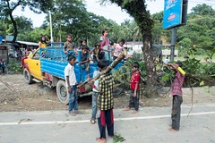 H504_3390 (bandashing) Tags: street red england tree men manchester shrine hill crowd logs rickshaw sylhet bangladesh carry socialdocumentary followers mazar mystics aoa shahjalal bandashing akhtarowaisahmed treecuttingfestival lallalshahjalal