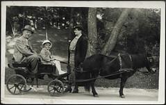 Archiv E821 Im Budapester Zoo, 1938 (Hans-Michael Tappen) Tags: hat fashion zoo 1930s outfit outdoor 1938 kutsche budapest hut pony oma ungarn opa junge kleidung enkel ausfahrt 1930er fotorahmen groseltern archivhansmichaeltappen ponykutsche