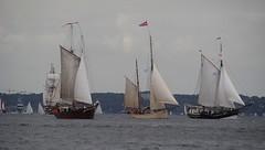 Kieler Woche (   flickrsprotte  ) Tags: juni ostsee kiel kielerfrde segelschiffe flickrsprotte mitdersampounterwegs kielerwoche2016
