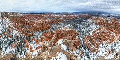 Bryce Point Winter (2:1) (glennlewisphotography) Tags: utah america usa bryce canyon brycecanyon nationalpark brycecanyonnationalpark colorful hoodoo hoodoos landscape panorama forest orange red nature glennlewis glennlewisphotography winter brycepoint