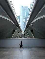 Under Bridges (Parrizio) Tags: bridge blue architecture marina concrete bay singapore cityscape exploring symmetry adventure jungle symmetrical