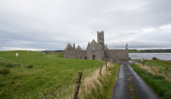 Lane to Rosserk Friary (backpackphotography) Tags: ireland ruins ruin carving mayo carvings friary franciscan rosserkfriary rosserk backpackphotography