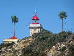 Algarve (geoGraf) Tags: lighthouse portugal coast seaside lagos palmtree farol algarve atlanticocean leuchtturm atlntico pontadapiedade
