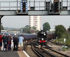The Line-Up (Deepgreen2009) Tags: london station train photographers railway steam eastcroydon braunton bluebellrailway bulleid uksteam 34046