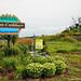 © Saint-Cuthbert-2014-Entrées de l'entité municipal-Entrée via Route 138