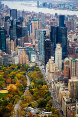 IMG_0270 (kayters) Tags: nyc newyorkcity november fall canon centralpark manhattan aerial birdseyeview kaytedolmatchphotography