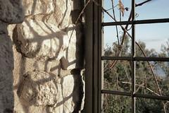 (Im-AN) Tags: autumn brick nikon gate branches bushes tuff nikoncameras nikond3100