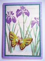 All-purpose handmade card 31 (tengds) Tags: flowers iris white green butterfly violet placemat card papercraft japanesepaper washi handmadecard tengds allpurposecard