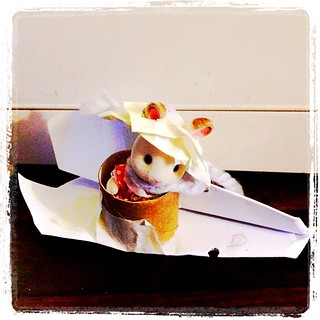365/339 • it doesn't show a great understanding of aerodynamics, but it does demonstrate maximum cuteness - the paper plane #Sylvanian test pilot • #2014_ig_339 #6yo #paperplanes #invention #toiletroll #making #latergram #checkthehat