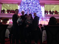 """The Christmas Tree at the Walnut Room • <a style=""""font-size:0.8em;"""" href=""""http://www.flickr.com/photos/109120354@N07/16094874025/"""" target=""""_blank"""">View on Flickr</a>"""