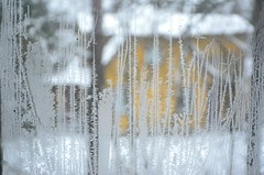 Jlilled (anuwintschalek) Tags: winter window tallinn estonia fenster january aken eesti eisblumen estland talv jlilled 2015 iceflowers nmme aknaklaas pskla fensterglas d7k nikond7000 18140vr
