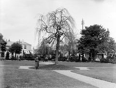 Sandymount, Dublin (National Library of Ireland on The Commons) Tags: dublin fountain drinking árbol sandymount spats glassnegative nationallibraryofireland sandymountgreen edmundhayesbootmaker thomasbattchemist ferguso'connor ferguso'connorcollection