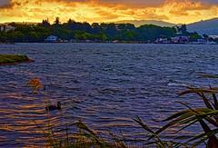 Sunset on fire (wendyjudith65) Tags: light sunset newzealand lake nature water landscape nikon colours goldenlight lakerotorua