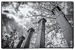 columns (alamond) Tags: park cemetry blackandwhite bw monochrome architecture canon memorial pantheon architect slovenia 7d ljubljana l column usm ef f4 1740 mkii markii plecnik plenik brane llens alamond zalar navje