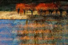 Twiskepolder (Ger Veuger) Tags: blue red abstract yellow collage landscape blauw digitalart digiart geel rood landschap noordholland dutchlandscape twiske abstractlandscape abstractphotographicart twiskepolder noordhollandslandschap abstractdigitalcollage abstractlandschap abstractedigitalecollage