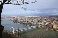 Elisabeth Bridge from Citadella, Budapest (Andrey Sulitskiy) Tags: hungary budapest danube