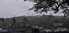 rain squall (D70) Tags: park homes cars chevrolet rain squall truck palms hawaii wind oahu pickup honolulu suv kuliouou toyata