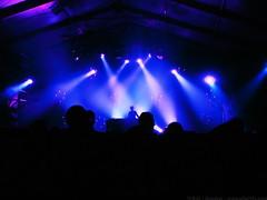 Samedi Soir @ Rock'N Solex 2016 - Bomber pour www.alter1fo (25) (alter1fo) Tags: festival rock boston club campus cheval one para n cc busy cotton claw 49 insa p bun rennes beaulieu tudiants solex tudiant beaulieux