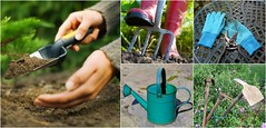 9 Essential Garden Tools for Your Shed (irecyclart) Tags: gardening fork hose rake gloves hoe shovel tool wateringcan wheelbarrow spade trowel