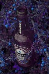 Una cerveza en el bosque de los duendes (Revolver Olviden) Tags: azul de marketing los publicidad cerveza el fantasy bosque fantasia una botella morada fantastica duendes saturada botellin