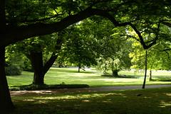 Mainz, Stadtpark (HEN-Magonza) Tags: germany deutschland mainz stadtpark municipalpark rheinlandpfalz rhinelandpalatinate