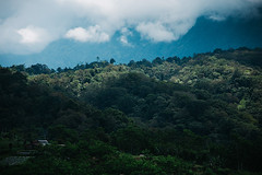 Bali again (Paulina Wierzgacz) Tags: bali indonesia spring travel traveller trip travelling tourist waterfall explore exotic asia portrait people landscape culture city reportage religion temple