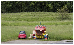 Smart selling (Harry -[ The Travel ]- Marmot) Tags: duitsland deutschland germany reis travel reise rural bayern beieren bavaria aardbeien verkoop erdbeer verkauf auto car smart strawberries sale olympusomdem5 allrightsreservedcontactmebyflickrmail woman knitting haken handwerken vrouw groen rood green red fruit fruitstal