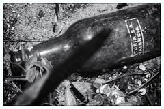 Turia, s.a. Valencia (lucas2068) Tags: blackandwhite bw byn blancoynegro beach fire bottle dune cerveza playa bn bier duna incendio botella saler