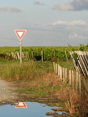 Reflet (Daniel Biays) Tags: reflet panneau triangle vignes vignoble gironde
