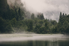 the silhuettes you drew here (STEPtheWOLF) Tags: morning mist mountain lake water fog forest swim sunrise canon austria duck woods day au styria 135l turnau grnersee 5d3