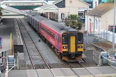 153325 (matty10120) Tags: dog train box railway class devon paignton 153 sprinter