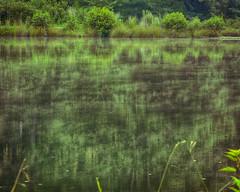 Smoke On The Water (CDE1231) Tags: mist lake reflection pine ga photography cde
