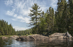 On Shining Waters We Float Through The Forests of Our Life. (Brian Rome Photography) Tags: park lake tree water rock clouds forest landscape photo walk hike canoe adventure photograph shore portage paddling provincial aldonquin