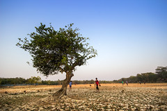 Save our world ...save your world (Amazing Bangladesh ( Prithul )) Tags: tree water canon eos live ngc soil drought climatechange 600d