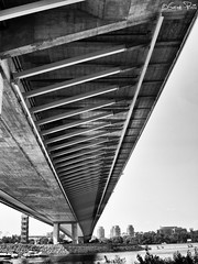 Ada bridge (bottom side) (goran_protic) Tags: adabrige adamost bridge bw blackandwhite blackwhite mono monochrome river sava ada lake pilon architecture lines belgrade serbia srbija beograd