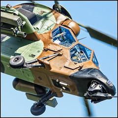 Tigre (Miguel Surez Miyar) Tags: tigre helicptero helicopter festivalareo festivalareodegijn festivalareodegijn2016 airshow 80400 afs nikon nikkor
