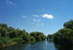 Danube Delta (cod_gabriel) Tags: danubedelta deltadunrii danube dunre dunrea romania roumanie romnia donau duna dunav