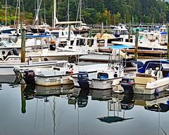 Bar Harbor, Maine 3 (sandytaylornyc) Tags: boat boats marina sailboat sailboats maine usa barharbor mountdesertisle mdi water reflection atlantic ocean sea harbor sjt trees tree mooring moorings